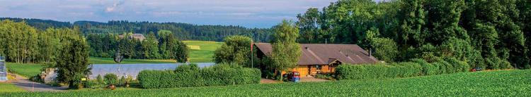 Birchhof